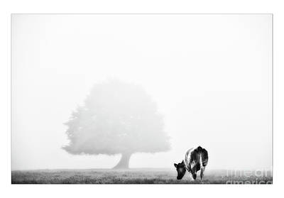 Black And White Nature Landscape Photography Art Work Art Print by Marco Hietberg
