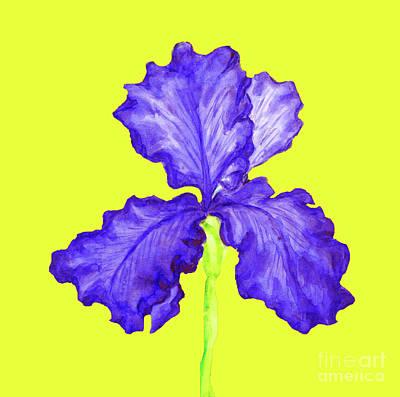 Painting - Blur Iris, Painting by Irina Afonskaya