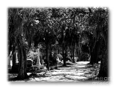 Photograph - Bonaventure Cemetery Walk Bw by Jacqueline M Lewis