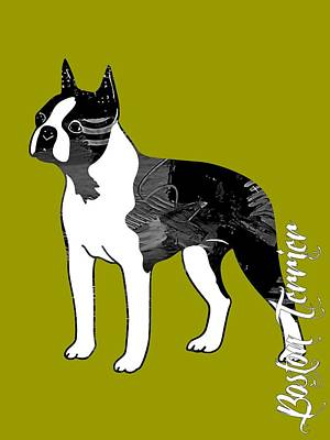 Boston Terrier Collection Art Print by Marvin Blaine