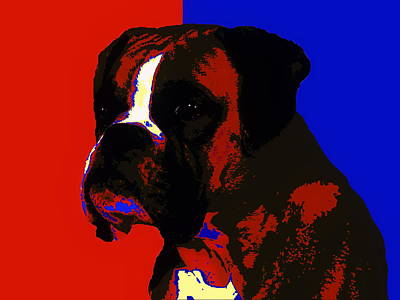 Boxer Dog Digital Art - Boxer Dog by Alexey Bazhan