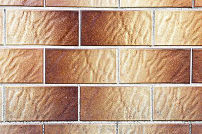 Ceramic Tile Photograph - Brown Tiles by Tom Gowanlock