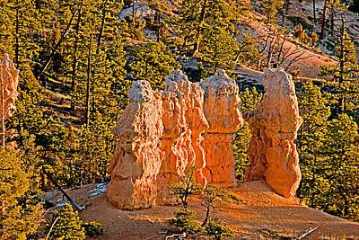 Bryce Canyon N.p. Art Print by Larry Gohl