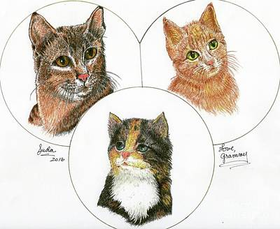 Drawing - 3 Cats For Juda by Bill Hubbard