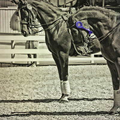 Photograph - Champions Blue by JAMART Photography