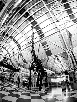 Photograph - Chicago O'hare International Airport Indoors Near Concourse C by Alex Grichenko