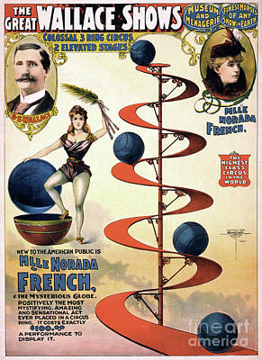 Drawing - Circus Poster, C1898.  by Granger