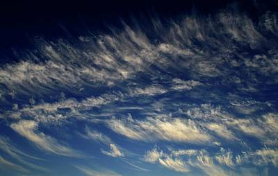 Photograph - Clouds Above by Lyle Crump