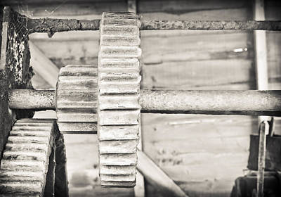 Mechanism Photograph - Cog by Tom Gowanlock