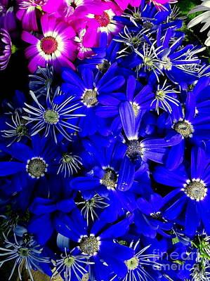 Digital Art - 3-d Petals by Ed Weidman