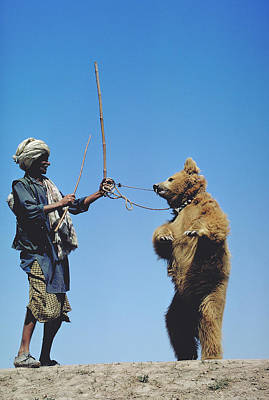 Photograph - Dancing Bear In Pakistan by Carl Purcell