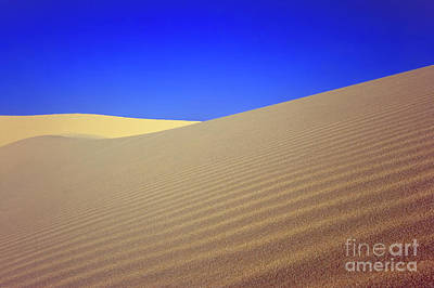 Desert Art Print by MotHaiBaPhoto Prints