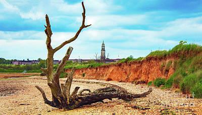 Coastal Landscape Mixed Media - Drift Wood by Svetlana Sewell