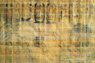 Photograph - Egyptian Papyrus by Dariusz Gudowicz