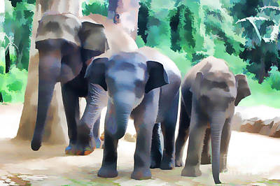 Digital Art - 3 Elephants by Charuhas Images