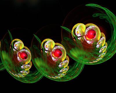 3 Embryos Art Print