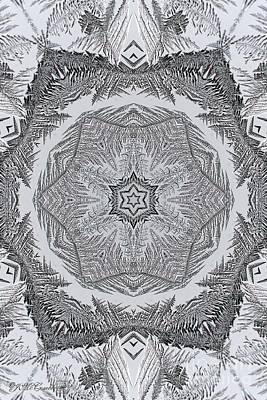 Digital Art - Fern Frost Mandala by J McCombie