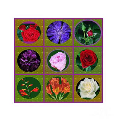 Photograph - Flowers Floral Customize Border Color Choose Paper Type N Frames Navinjoshi Fineartamerica Pixels  by Navin Joshi