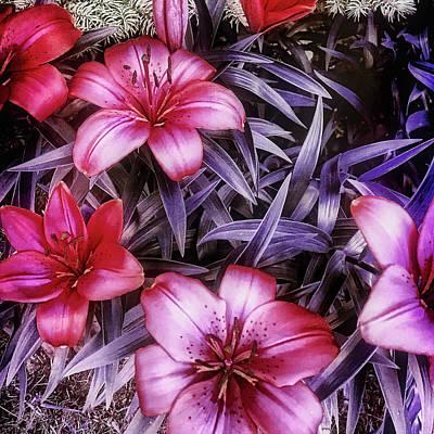 Photograph - Flowers by Roberto Pagani