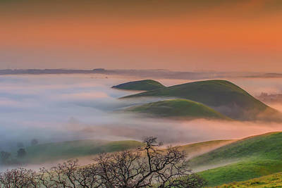 Photograph - Fog At Sunrise by Marc Crumpler