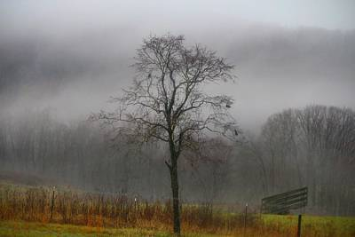Photograph - Foggy Day by Kathryn Meyer