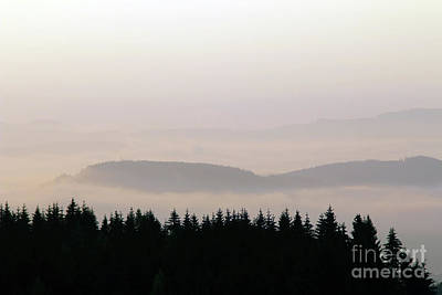 Photograph - Forested Hills In Early Morning Mist by Michal Boubin