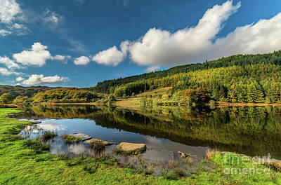 Fall Grass Photograph - Geirionydd Lake by Adrian Evans