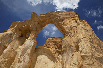 Photograph - Grand Staircase Escalante National Monument by Mark Smith