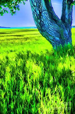 Photograph - Green Fields by Rick Bragan
