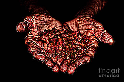 Photograph - Hands Of Hope by Milan Karadzic