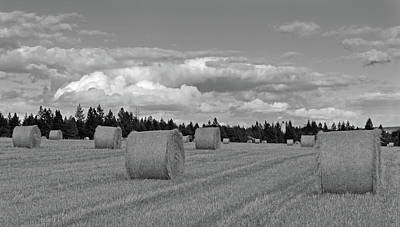 Photograph - Harvest Time by Vic Harris