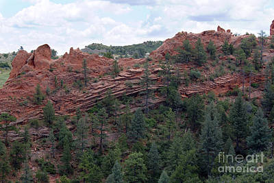 Hiking The Mesa Trail In Red Rocks Canyon Colorado Art Print by Steve Krull