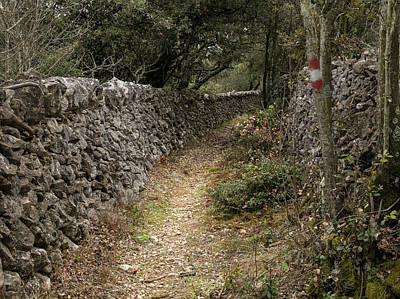 Queen - Hiking trail along old stone walls in Croatia by Stefan Rotter