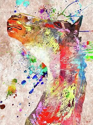 Mixed Media - Horse by Daniel Janda
