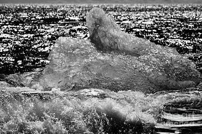 Bergy-bit Photograph - Iceberg Washing Up On Black Sand Beach At Jokulsarlon Iceland by Joe Fox