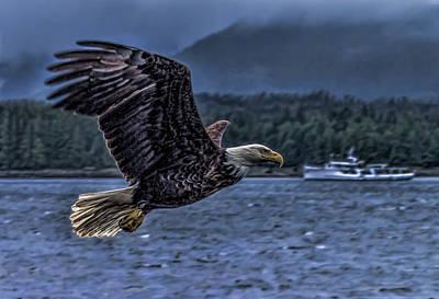Digital Art - In Flight. by Timothy Latta