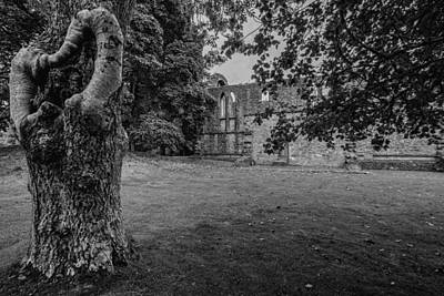 Photograph - Inchmahome Priory by Jeremy Lavender Photography