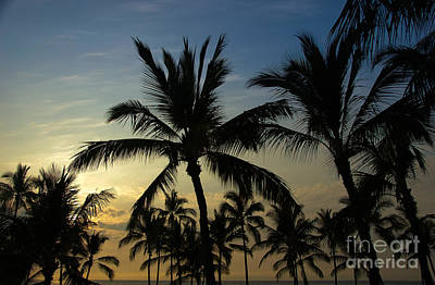 Art Print featuring the photograph Kona Sunset by Kelly Wade