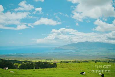 Kula Maui Hawaii Art Print by Sharon Mau