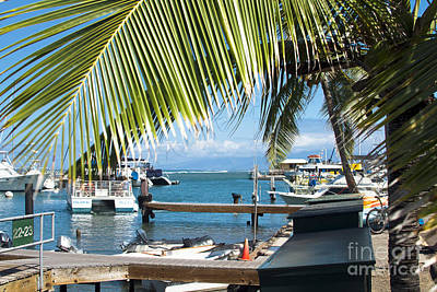 Photograph - Lahaina Harbor Maui Hawaii by Sharon Mau