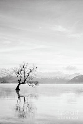 Photograph - Lake Wanaka, Otago, New Zealand by Colin and Linda McKie
