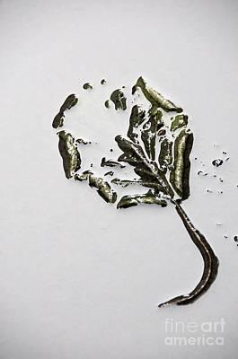 Cold Temperature Photograph - Leaf by Bernard Jaubert