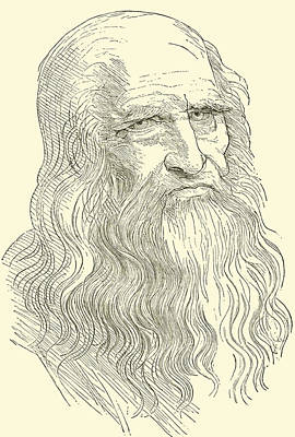 Pen Drawing - Leonardo Da Vinci by English School