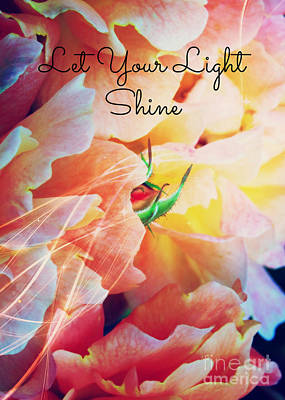 Photograph - Let Your Light Shine by Carol Groenen