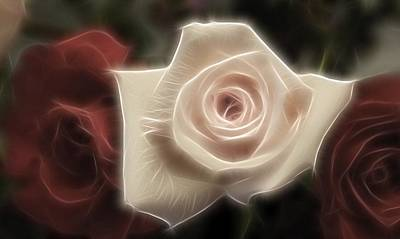 White Fractals Photograph - 3 Little Roses For Patrice by Kevin  Sherf