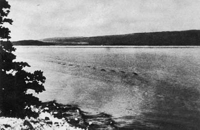Photograph - Loch Ness Monster, 1934 by Granger