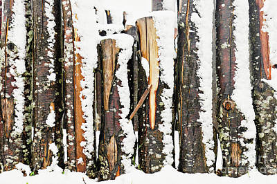 Photograph - Log Fence In The Snow by Tom Gowanlock