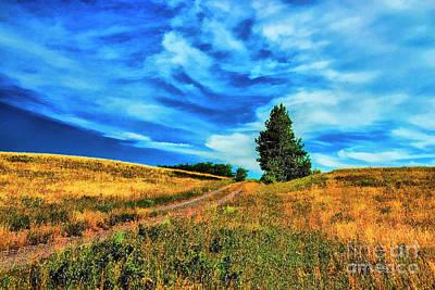 Photograph - Lone Tree by Rick Bragan