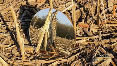 Photograph - Looking Back by Erick Schmidt