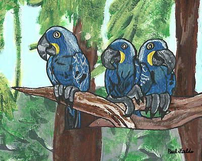 Painting - 3 Macaws by Paul Fields